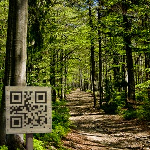 use QR Codes for more information